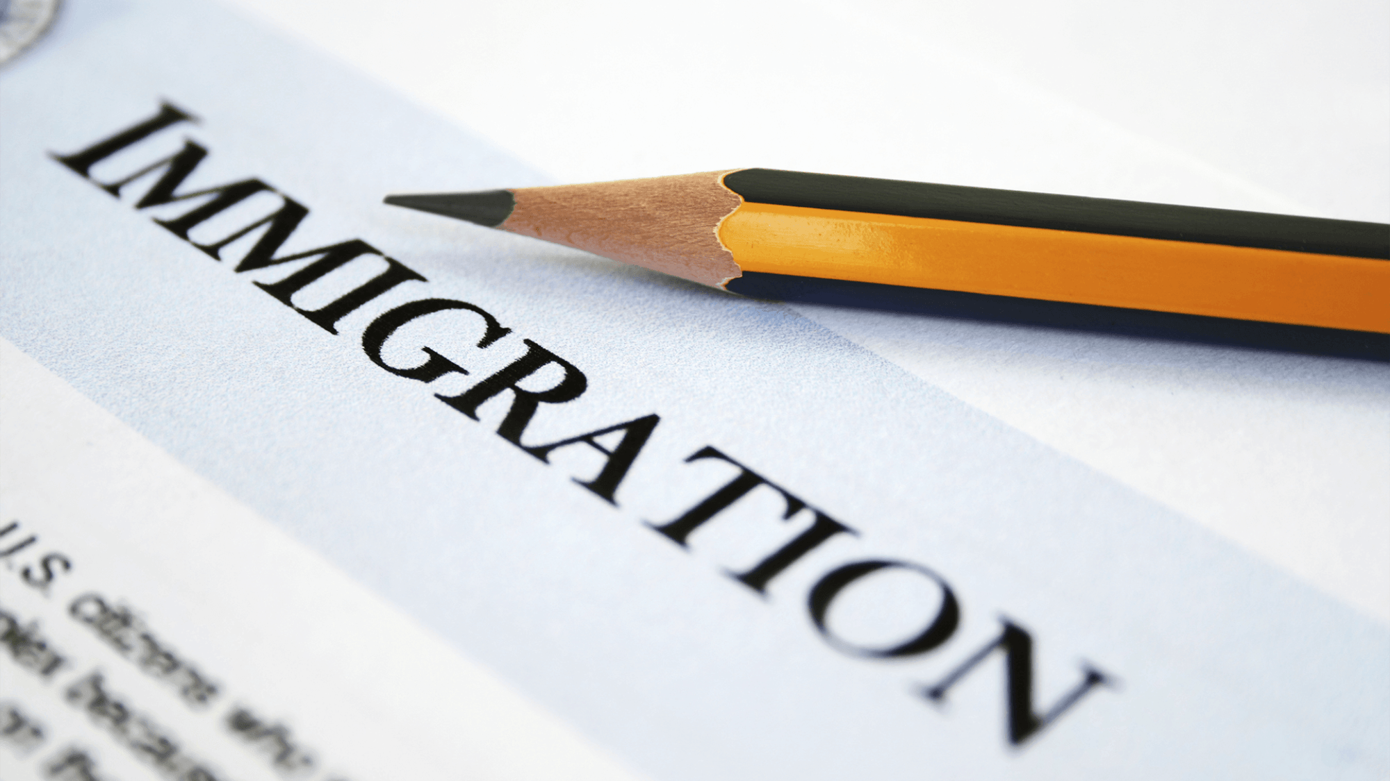 Applying Immigration to New Zealand from India with Experts